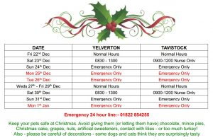 christmas opening hours 17